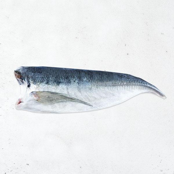 無鹽竹筴魚切片 竹筴魚,無調味,無鹽,海產,中秋烤肉,免運