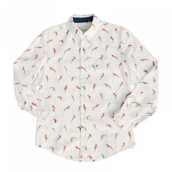 鸚鵡襯衫 白色,藍色,鸚鵡,滿版,印花,襯衫