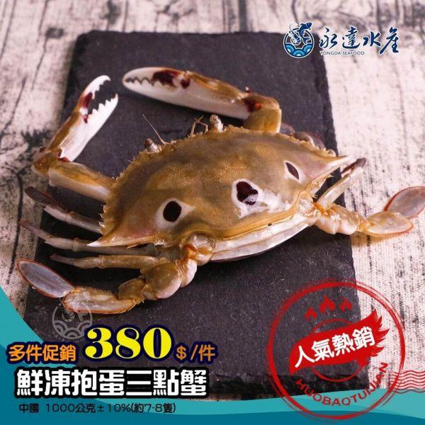 鮮凍抱蛋三點蟹 水產,海鮮,鮮凍抱蛋三點蟹,三點蟹,母蟹,蟹肉,蟹黃,螃蟹,蟹