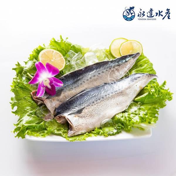 台灣海域薄鹽鯖魚 水產,海鮮,台灣海域薄鹽鯖魚,鯖魚,薄鹽,魚肉,魚
