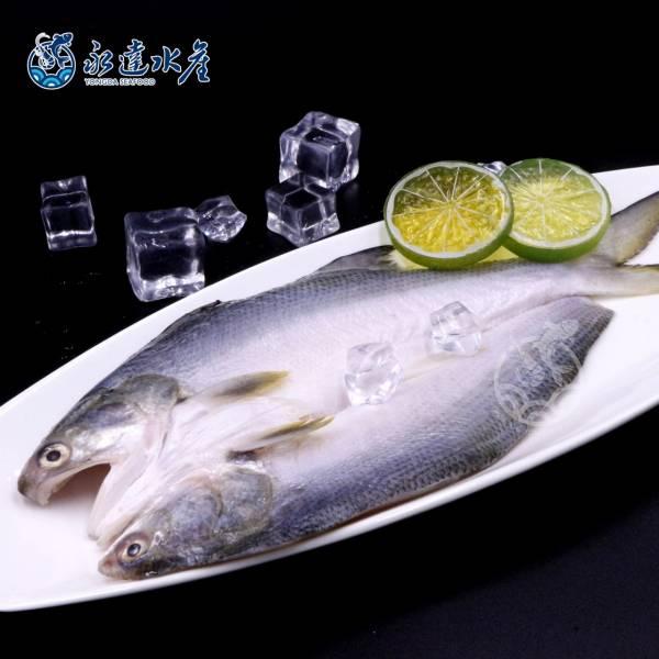 鮮凍午仔魚 水產,海鮮,鮮凍午仔魚,午仔魚,魚肉,魚