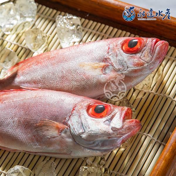 鮮凍野生紅目鰱 水產,海鮮,鮮凍野生紅目鰱,紅目鰱,剝皮魚,野生,魚肉,魚