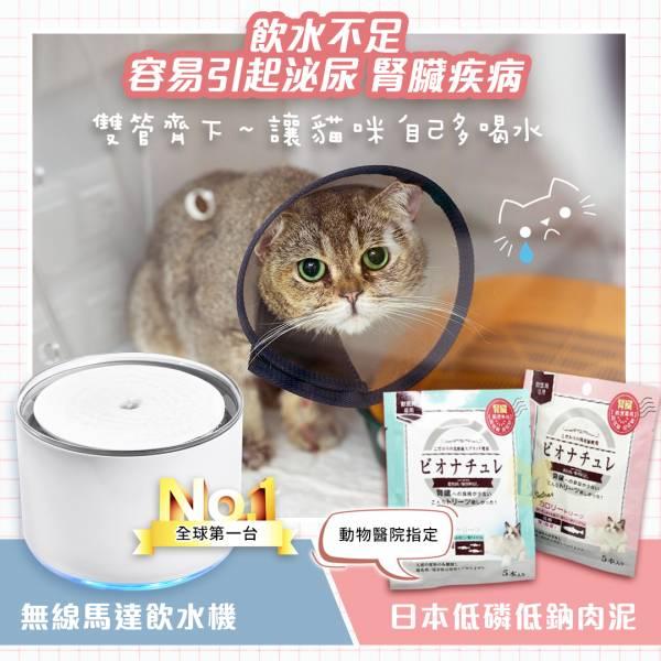 早鳥方案【貓咪喝水雙寶】升級版無線馬達寵物飲水機【送】日本BioNature碧然思低磷低鈉高營養肉泥 10入