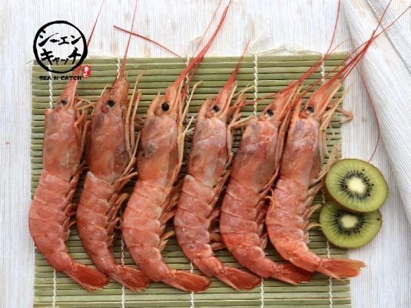 智利天使紅蝦(2kg) 智利天使紅蝦,海鮮, 海產, 海鮮宅配, 海鮮市場, 生鮮宅配, 海產購物網, 烤肉食材,SEA N CATCH, 隆泰物產