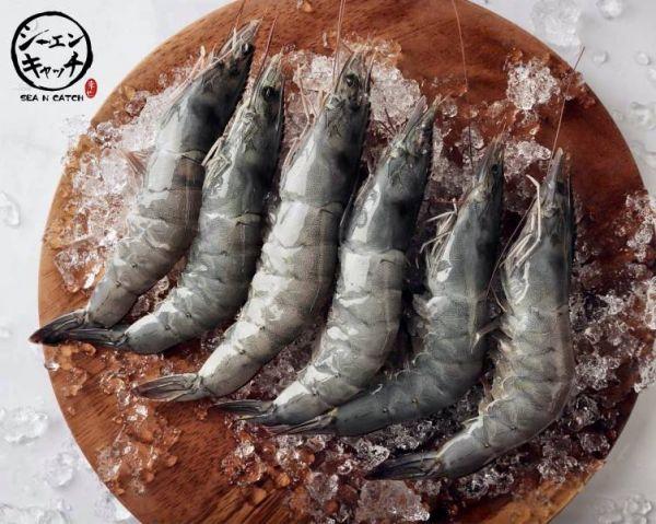 泰國白蝦31/35 (4盒入) 泰國白蝦,海鮮, 海產, 海鮮宅配, 海鮮市場, 生鮮宅配, 海產購物網, 烤肉食材,SEA N CATCH, 隆泰物產