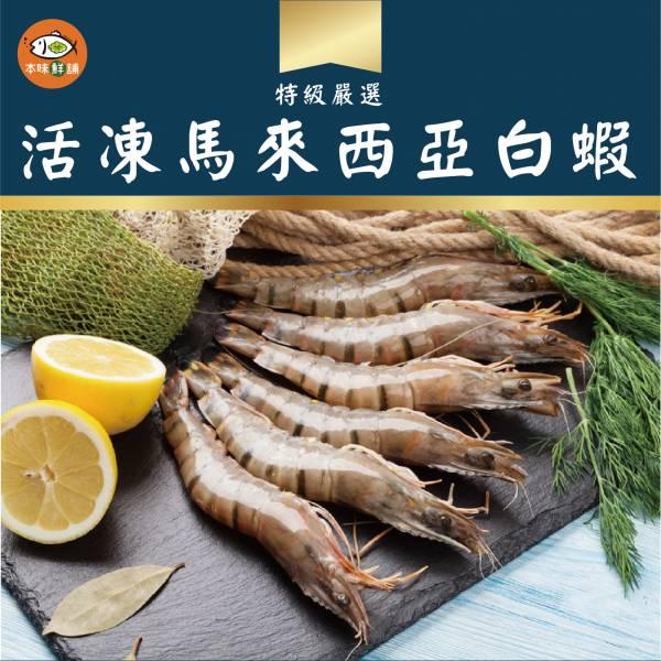 活凍馬來西亞大白蝦1盒600g/15-18尾 大白蝦
