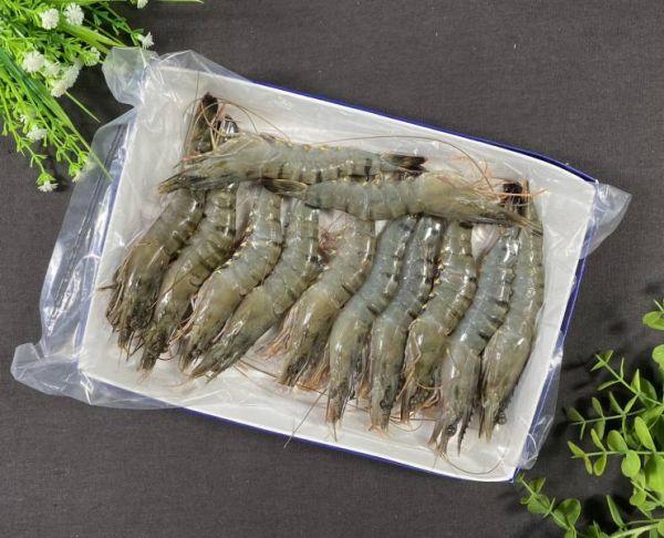 可愛的草蝦12隻!!