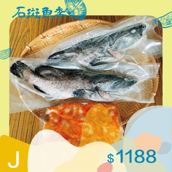 石斑魚組【興達港區漁會】