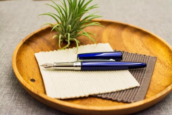 皮爾卡登水瓶座鋼筆 鋼筆,皮爾卡登,Aquarius