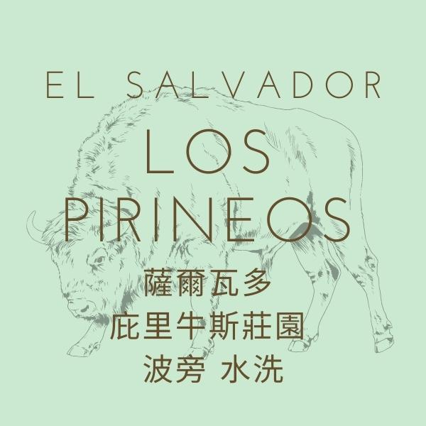 【熟豆】薩爾瓦多 庇里牛斯莊園 波旁 水洗 熟豆,薩爾瓦多,庇里牛斯莊園,波旁,水洗,咖啡豆