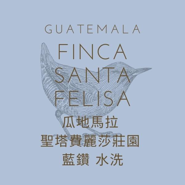 【熟豆】瓜地馬拉 聖塔費麗莎莊園 藍鑽 水洗 熟豆,瓜地馬拉,聖塔費麗莎莊園,藍鑽,水洗,咖啡豆