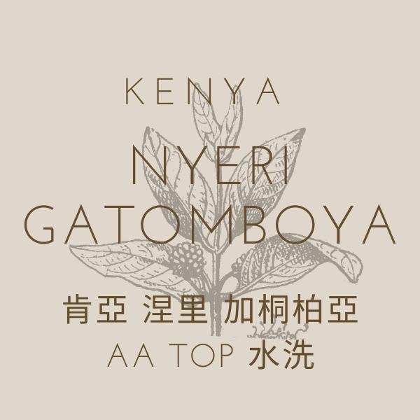 【熟豆】肯亞 涅里 加桐柏亞AA TOP 水洗 熟豆,肯亞,涅里,加桐柏亞,水洗,咖啡豆