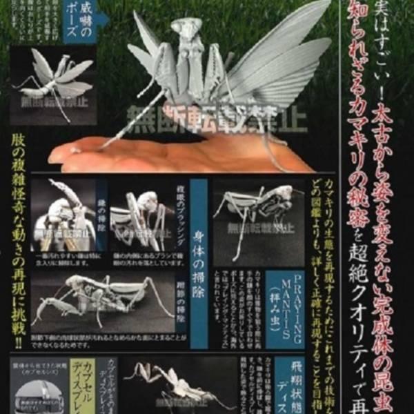 BANDAI 扭蛋 螳螂環保扭蛋 全5種販售 BANDAI,扭蛋,螳螂