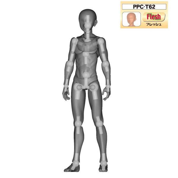 Hobby Base 1/12 PPC-T62 男素體 膚色 Hobby Base,1/12,PPC-T62,男素體,膚色