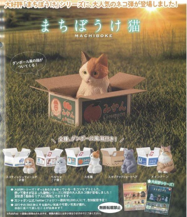 BANDAI 扭蛋 等待中的貓 全5種 隨機5入販售 BANDAI,扭蛋,等待中的貓,全5種 隨機5入販售,