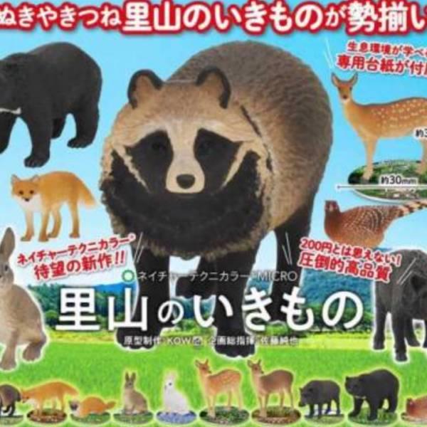IKIMON 扭蛋 NTC 日本里山生物 全10種販售 IKIMON,扭蛋,NTC,日本里山生物,全10種販售,
