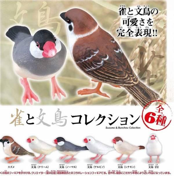 Shine-G 扭蛋 麻雀與文鳥造型公仔 隨機5入販售  Shine-G,扭蛋,麻雀,文鳥