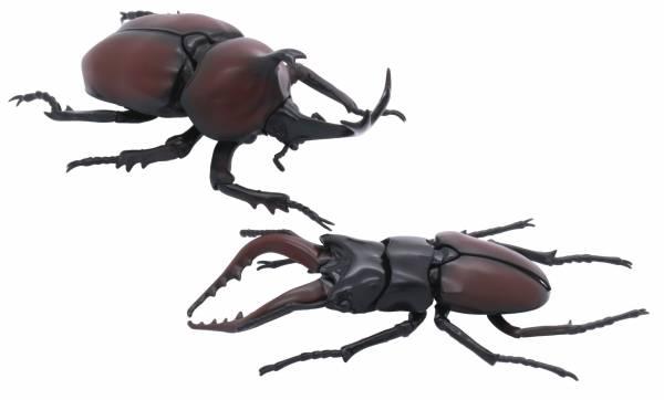 獨角仙 vs 鍬形蟲 對決套組 FUJIMI 自由研究25 生物編 富士美 組裝模型 FUJIMI,富士美,自由研究,生物,獨角仙,鍬形蟲,,