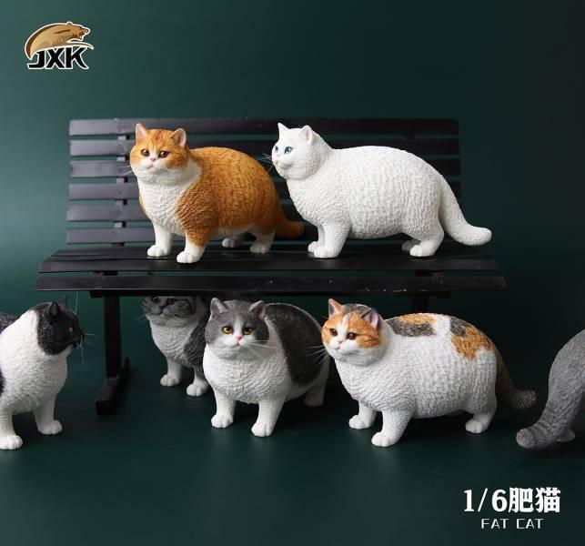 JXK 1/6 肥貓系列 英國短毛貓 動物公仔 A-G 全7種 個別販售   JXK,1/6,肥貓系列,英國短毛貓,動物公仔,A-G,全7種,個別販售,