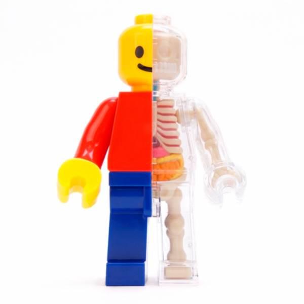 4D Master FUNNY ANATOMY 小積木人解剖 經典原色版 Small Brick Man Classic 4D Master,FUNNY ANATOMY,小積木人解剖,經典原色版,Small Brick Man Classic