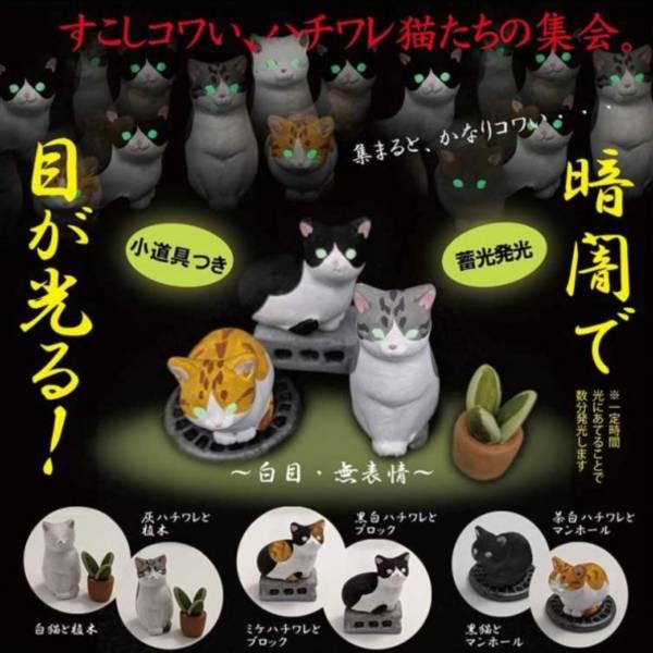 Shine-G 扭蛋 螢光眼貓貓 盯著你心裡發寒 全6種 隨機5入販售   Shine-G,扭蛋,螢光眼貓貓,盯著你心裡發寒,全6種,隨機5入販售,