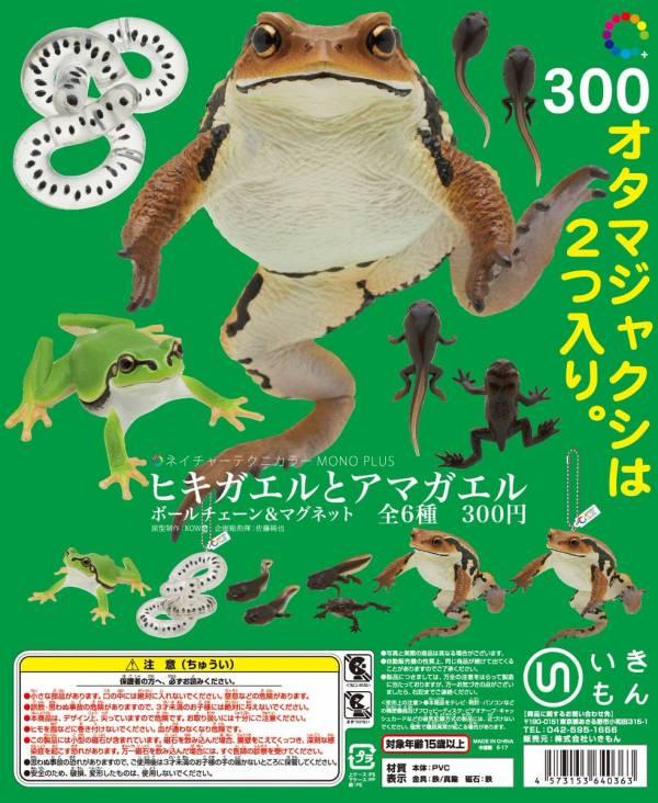 KITAN 轉蛋 NTC圖鑑雨蛙與蟾蜍吊飾&磁鐵 全6種 隨機5入販售 扭蛋,NTC圖鑑,雨蛙與蟾蜍吊飾,磁鐵
