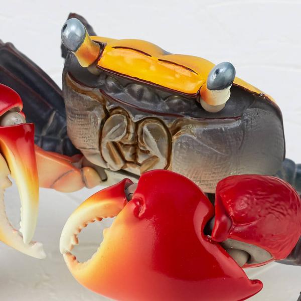 海洋堂 紅螯螳臂蟹 REVO GEO 可動生物系列 KAIYODO KAIYODO,REVO GEO,紅螯螳臂蟹,螃蟹