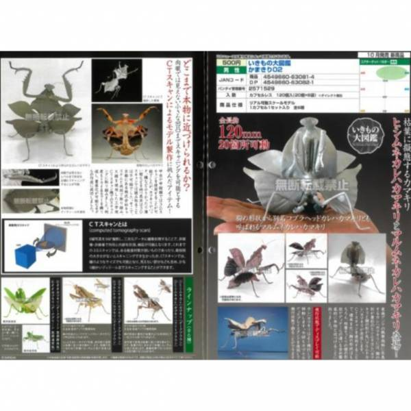 BANDAI 扭蛋 生物大圖鑑 螳螂2 全6種 隨機5入販售  BANDAI,扭蛋,生物大圖鑑,孔雀蜘蛛,全5種 隨機5入販售,