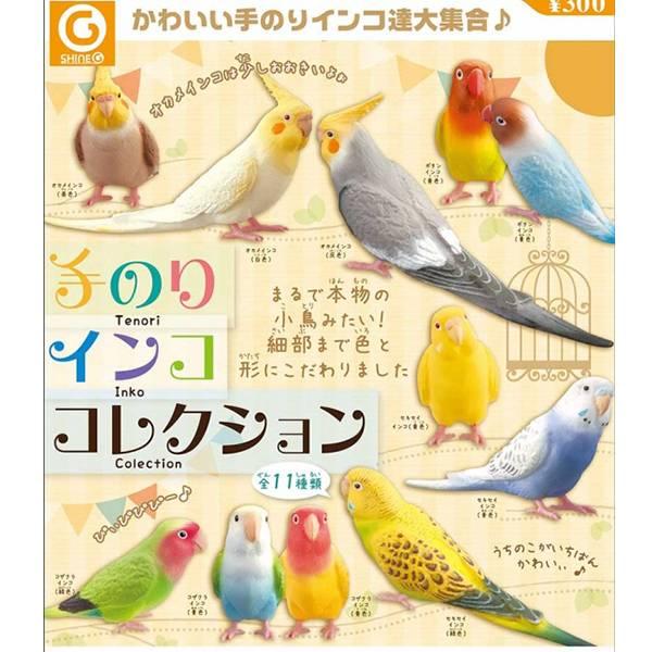 Shine-G 扭蛋 鸚鵡造型公仔 全11種 隨機10入販售 Shine-G,扭蛋,鸚鵡,鸚鵡造型公仔