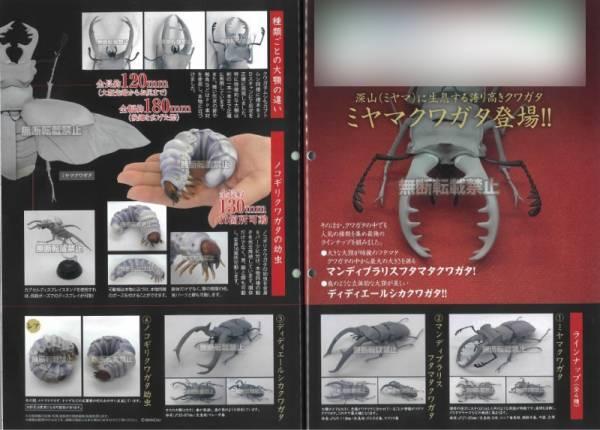 BANDAI 扭蛋 生物大圖鑑 鍬形蟲02 全4種 隨機4入販售  BANDAI,扭蛋,生物大圖鑑,鍬形蟲02,全4種,隨機4入販售,