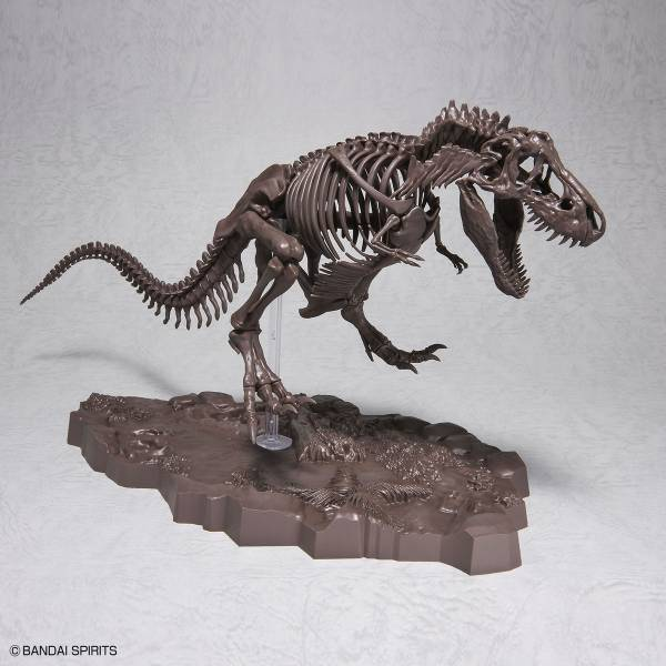 BANDAI 1/32 幻想骨骼系列 暴龍 恐龍骨骼 組裝模型 BANDAI,1/32,幻想骨骼系列,暴龍,組裝模型,恐龍骨骼