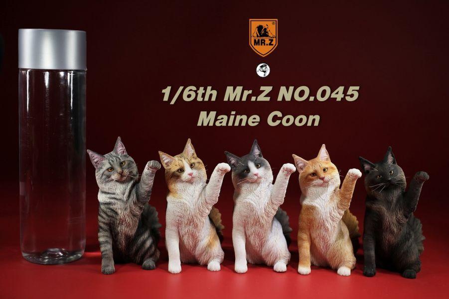 Mr.Z 老朱 1/6 模擬動物模型第45彈  緬因貓 全5種 分別販售 Mr.Z,老朱,模擬動物模型,緬因貓