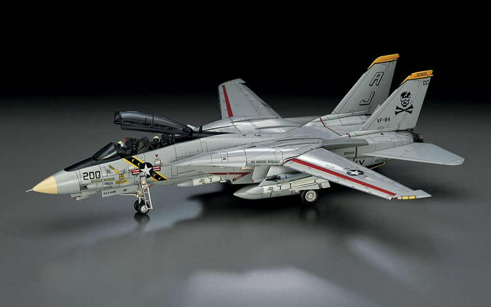 HASEGAWA 1/72 美國海軍 F-14A 雄貓式戰鬥機 大西洋空母航空團 組裝模型 HASEGAWA,1/72,美國海軍,F-14B,熊貓式戰鬥機,VF-103,海盜旗,Jolly Roger 2002,刺繡配賦