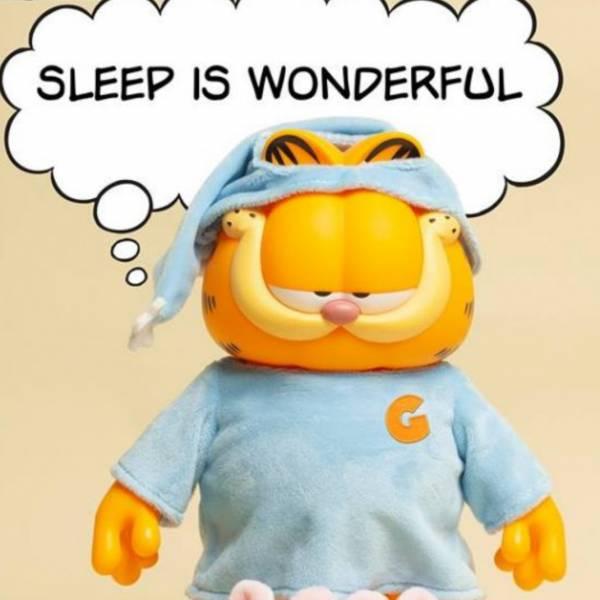 ZCWO 加菲貓 Garfield 睡衣 ZCWO,加菲貓,Garfield,睡衣