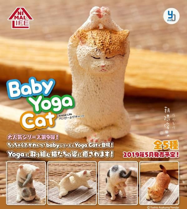 研達 Yendar 扭蛋 ANIMAL LIFE 瑜珈貓Yoga Cat 朝隈俊男 全5種 一中盒隨機6入販售 *6 研達,Yendar,扭蛋,ANIMAL LIFE,狗瑜珈寶寶,BABY YOGA DOG