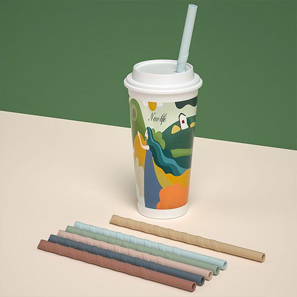 環保矽膠吸管組 (2大2小2刷+布套)