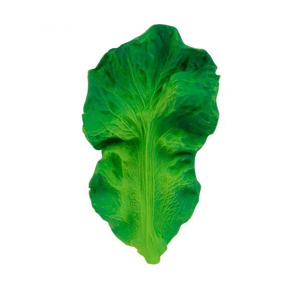 西班牙Oli&Carol健康蔬果-芥藍菜