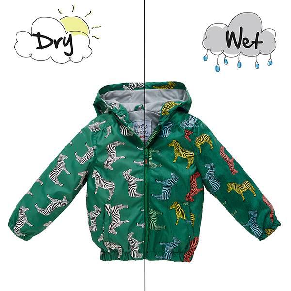 英國變色雨衣(綠色斑馬)