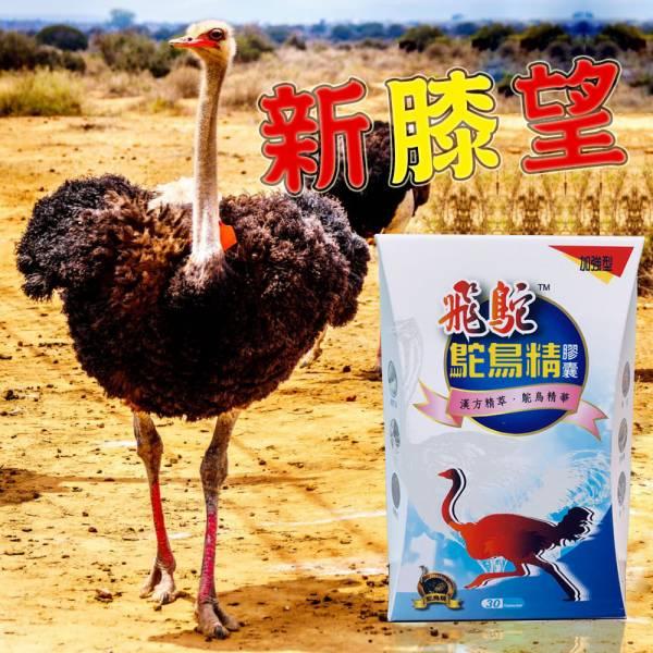 飛鴕 鴕鳥精健步膠囊2入(30膠囊/盒)電視購物熱銷強筋健骨、告別骨骼演緩生長,升高疏通骨質筋脈