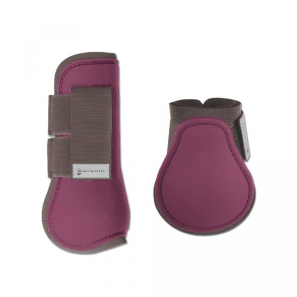 障礙護具 (前後腿/紫色/FULL/COB)
