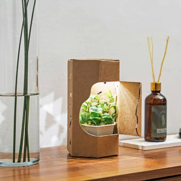 光盒植栽 LED小夜燈 3件組 小夜燈 家居 禮品