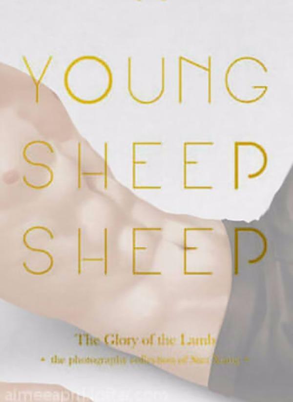 《 YOUNG SHEEP SHEEP 》孫翔個人寫真集 /全職高手 周邊 BY:AD(Vol de Nuit) 全職高手 周邊 BY:AD(Vol de Nuit)