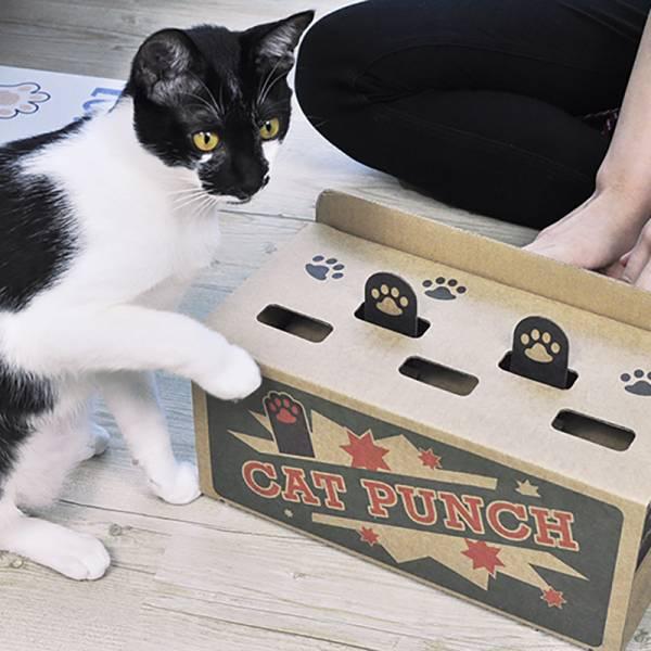 【主子練打】貓打地鼠 貓玩具,竉物用品