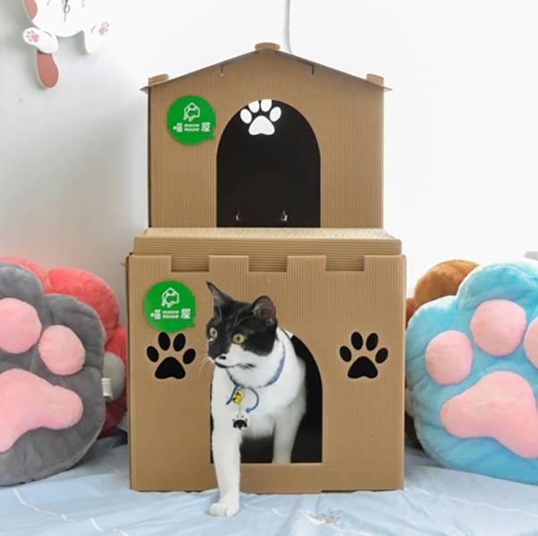 【蓋一座天鵝堡給主子】貓屋天鵝堡 貓窩 貓屋 貓窩,貓屋,紙箱貓窩,貓抓板