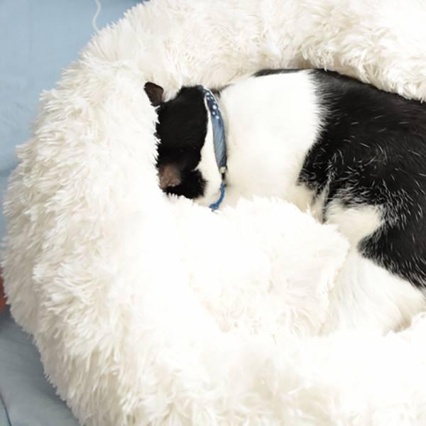 *官方正品【深度睡眠貓窩】雲朵貓窩 貓睡窩,竉物用品,雲朵貓窩,貓窩推薦