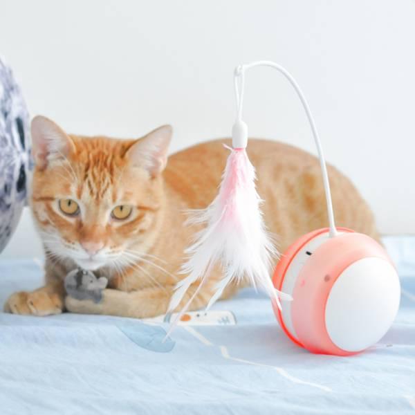 【貓貓瘋狂玩】羽毛運動發聲發光球 (充電版) 玩具球,發光球,貓玩具