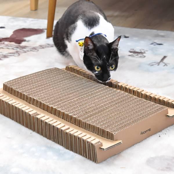 【喵喵們簡單抓】貓樂園獨家設計 貓抓板 Design by Boxkitty 貓抓板,貓奴推薦,踏踏