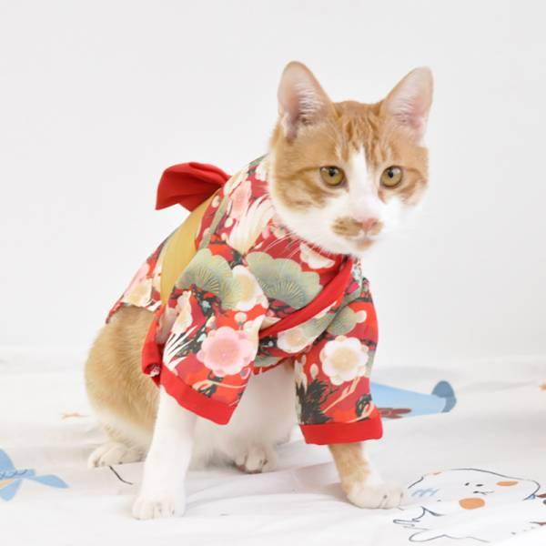 *限量出清【來自日本的喵】日式和風寵物衣服