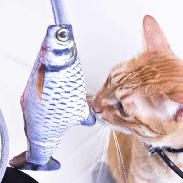 【這魚太真啦】仿真動物逗貓玩具