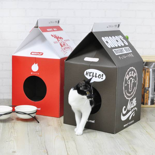 【老闆來杯熱牛奶】牛奶盒貓捉板